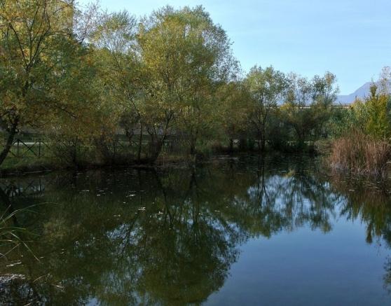 A Teramo Il Parco Fluviale Gestito Dalla Comunità Labsus