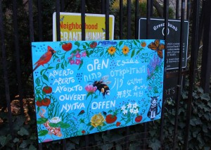 community garden (3)