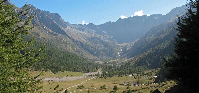 http://verticalife.it/images/outdoor-italy-products/trekking-piemonte-conca-del-pra-excursion/03-hiking-val-pellice-conca-del-pra.jpg